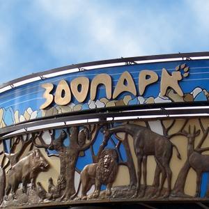 Зоопарки Березника